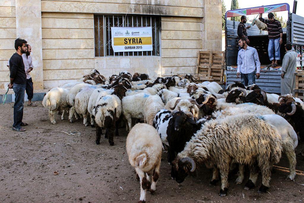 Rakyat Syria perlu dibantu