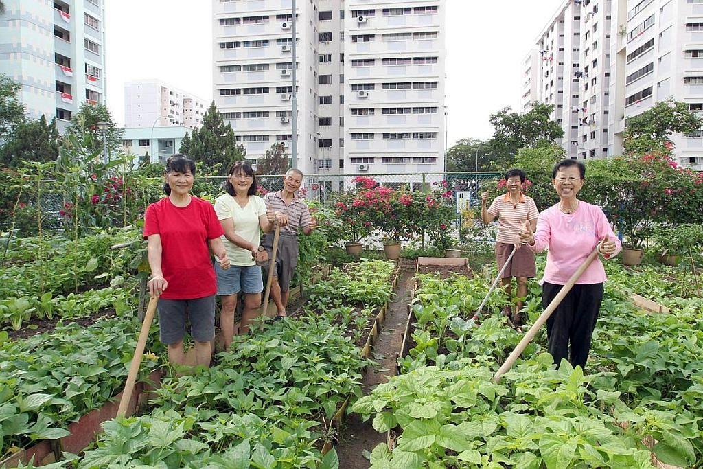 Kunjungi sehingga 11 taman masyarakat di Bukit Panjang