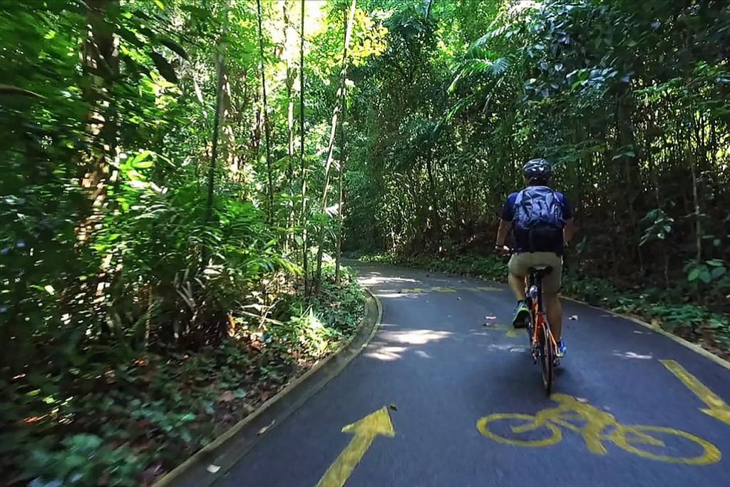 Laluan basikal, pejalan kaki di Sentosa diberi nafas baru