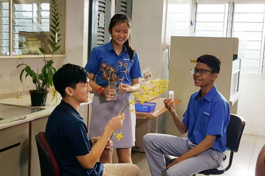Anggerik emas 'berkilauan' di Sekolah Menengah Teck Whye