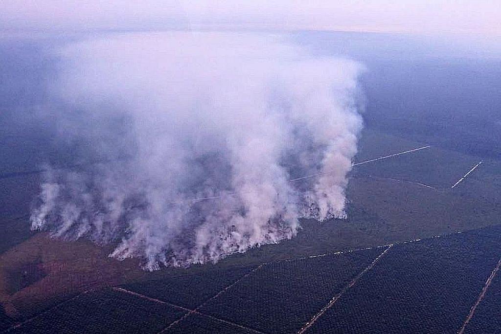 Usaha padam kebakaran hutan di Sumatera, Kalimantan diteruskan