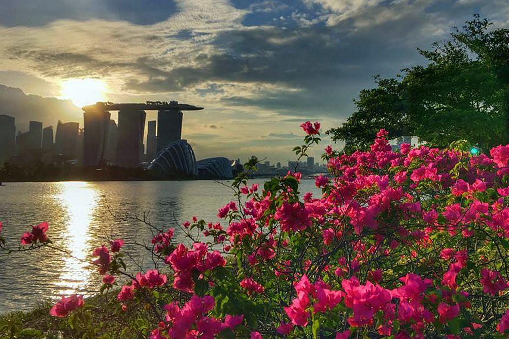 Bakat fotografi terpendam PM Lee