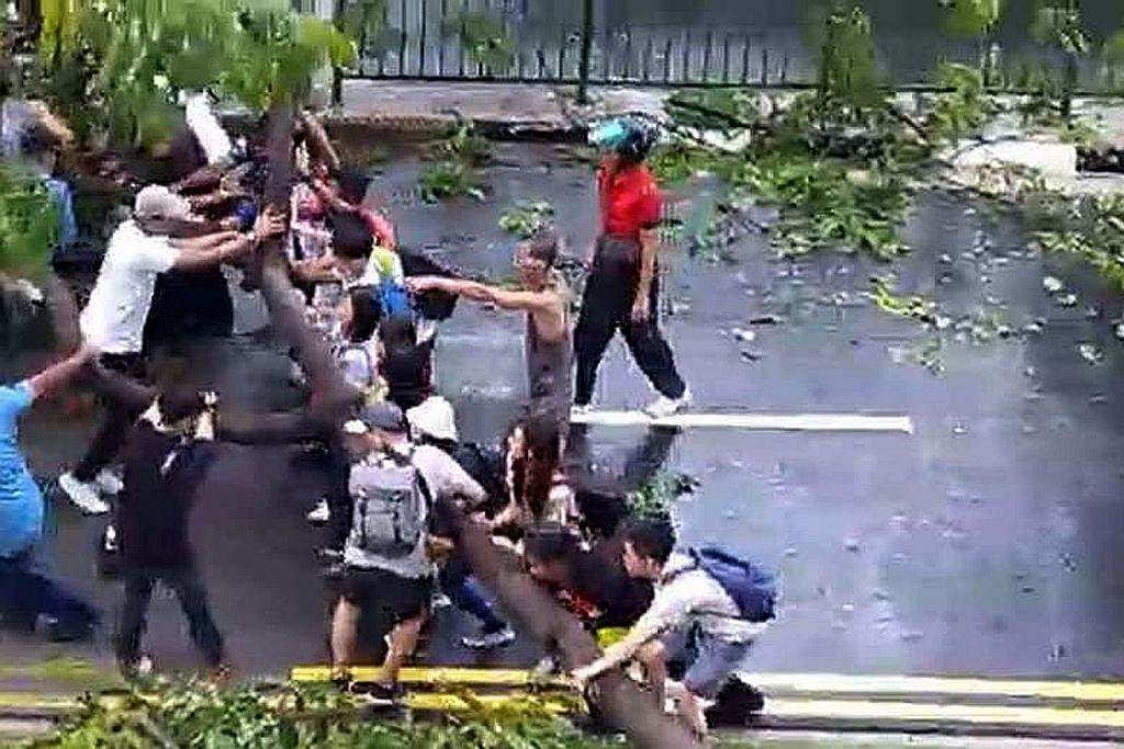 Beramai-ramai alih pokok tumbang