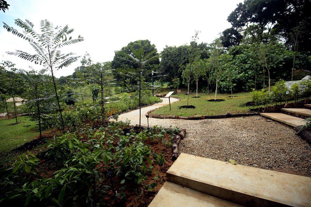 Native Garden baru tandai Minggu Biodiversiti
