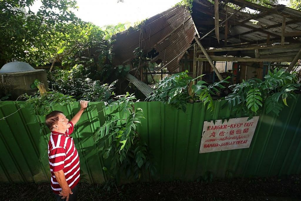 Projek pulih rumah kampung di Pulau Ubin