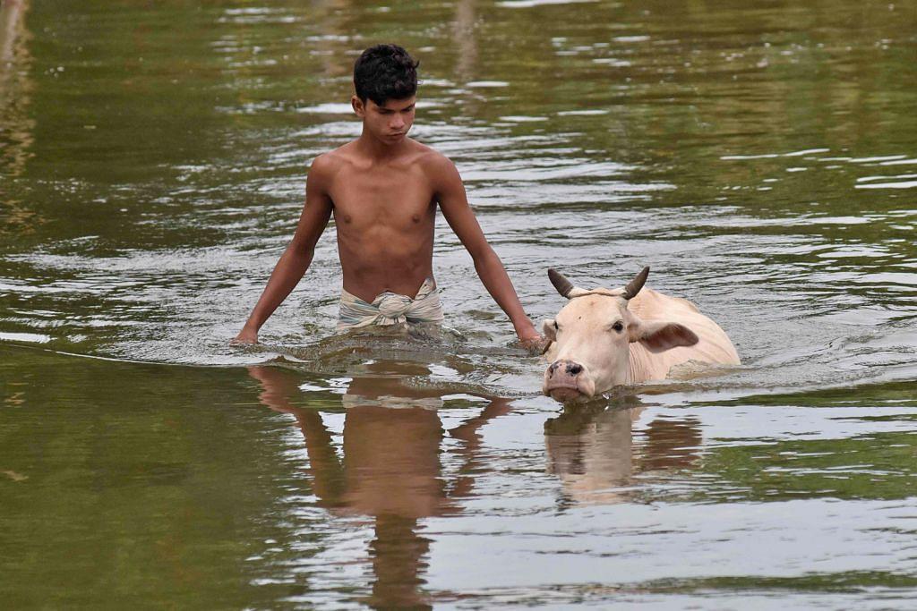Angka korban banjir di India naik kepada 83 orang