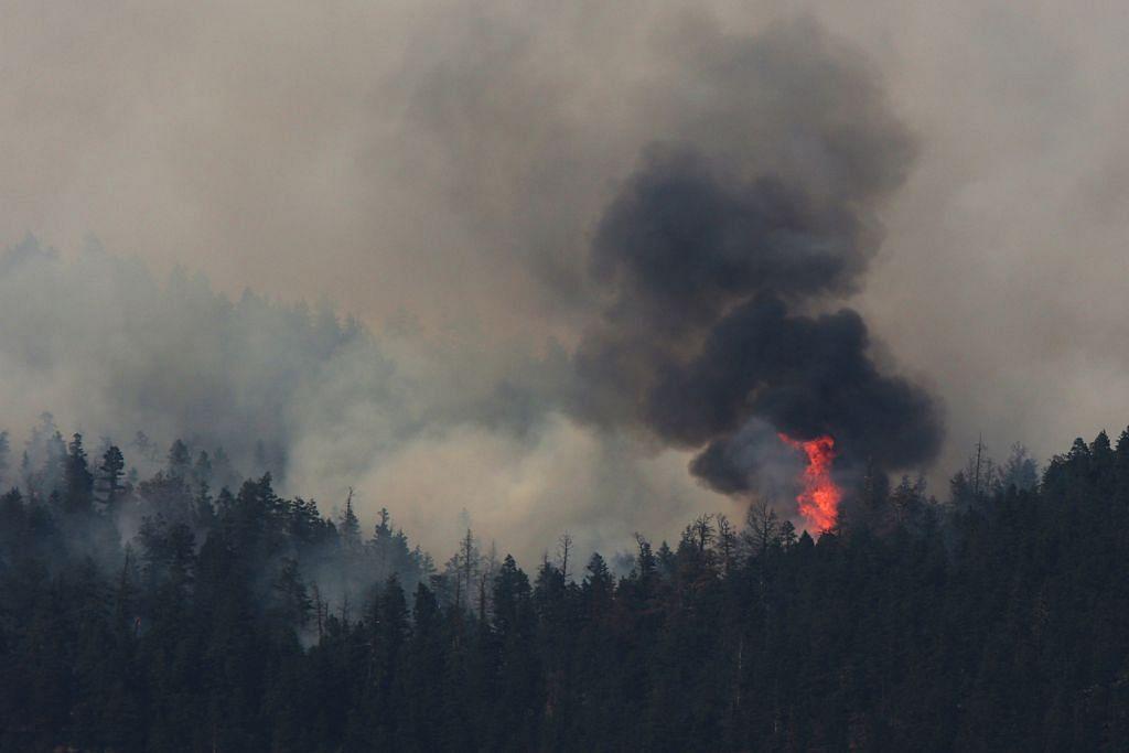 British Columbia lanjut darurat ekoran kebakaran