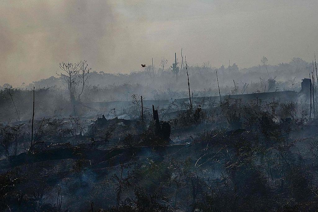 Jumlah titik panas di Indonesia meningkat