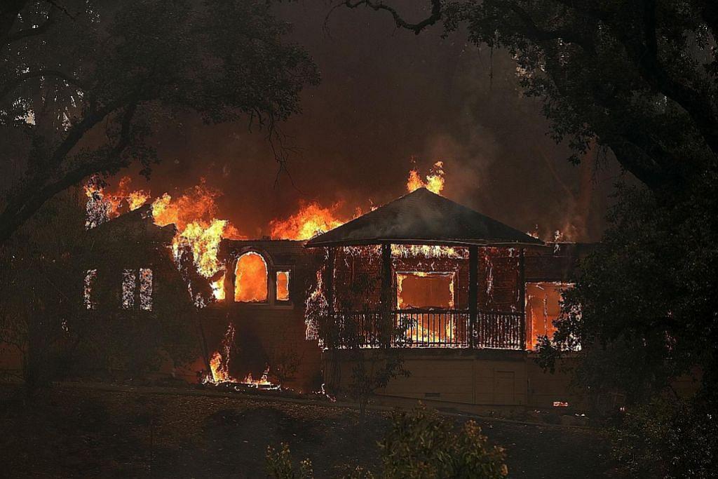 Kebakaran hutan California cetus krisis kemanusiaan