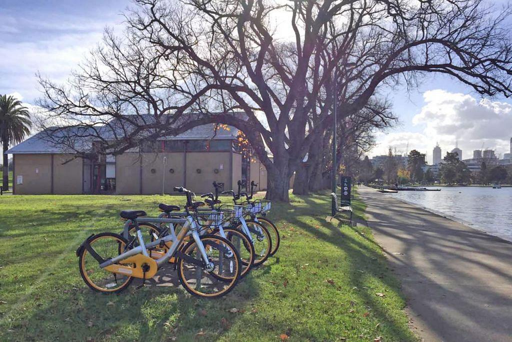 BUKAN SEMUA BERTIMBANG RASA: Basikal oBike diletak di tepi Sungai Yarra di Melbourne. Ada pengguna membuang basikal sewa itu ke dalam sungai tersebut. - Foto oBike Australia
