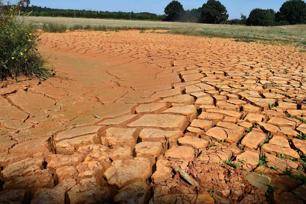 KONTANG AIR: Cawang sungei 'La Sarthe' yang dipanggil 'Le Preau' di Louplande, barat daya Perancis kekontangan air akibat gelombang haba yang melanda sebahagian besar Eropah sejak kebelakangan ini (gambar atas). - Foto AFP