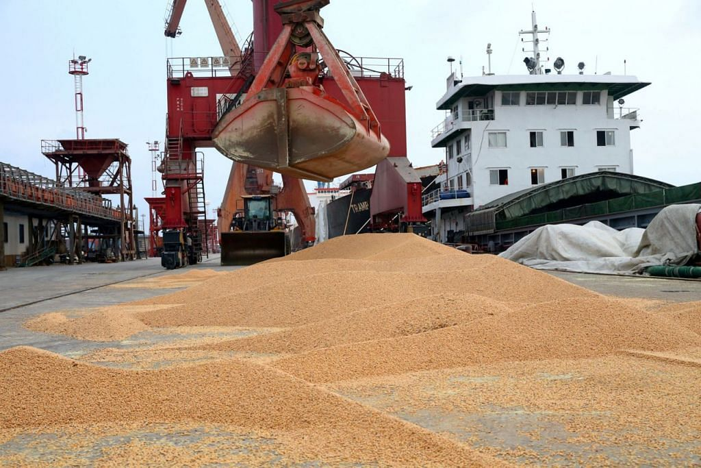 KESAN TARIF BALASAN: Kacang soya import dipunggah di pelabuhan di Nantong, wilayah Jiangsu di China. Tarif balasan China ke atas kacang soya Amerika membuat petani Amerika kerugian dan kehilangan pekerjaan. Perkara bertambah buruk apabila China berpaling pada negara lain bagi bekalannya. - Foto REUTERS