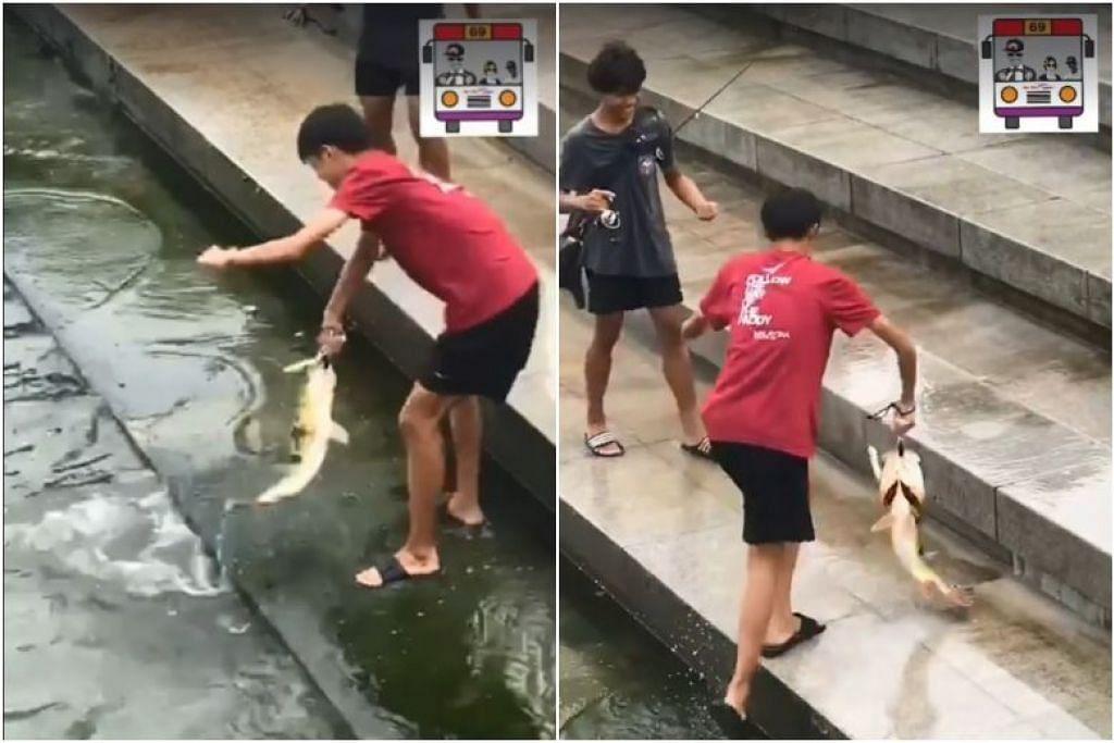 PUB merayu dapatkan maklumat mengenai dua remaja yang memancing secara haram di Merlion Park dalam video yang disiarkan oleh laman Facebook SBS - Sure Boh Singapore.