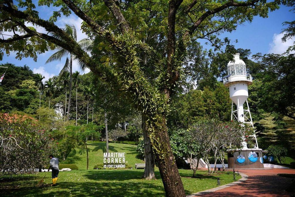 HIDUPKAN SEMULA SEJARAH TAMAN: Teres Raffles sekarang akan dibangunkan menjadi Kebun Raffles. Kebun ini akan ditanam dengan tumbuh- tumbuhan yang berkait dengan Sir Stamford Raffles seperti periuk kera. - Foto SPH
