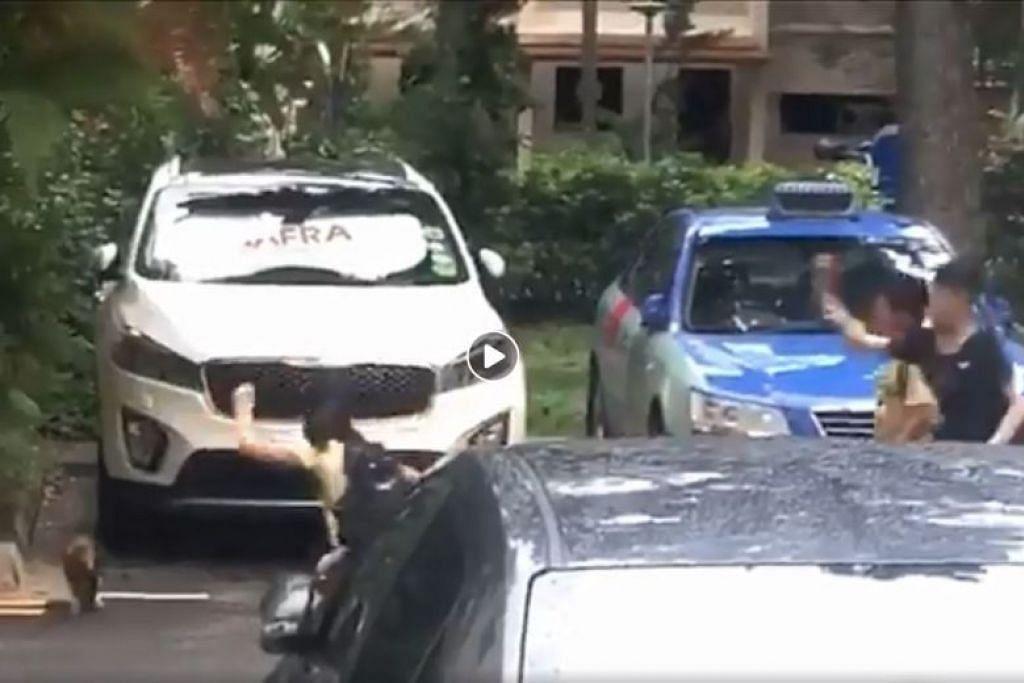 Dalam video itu, tiga kanak-kanak tersebut mengejar kucing dan melempar sesuatu ke arahnya. Foto: FACEBOOK / ROADS.SG