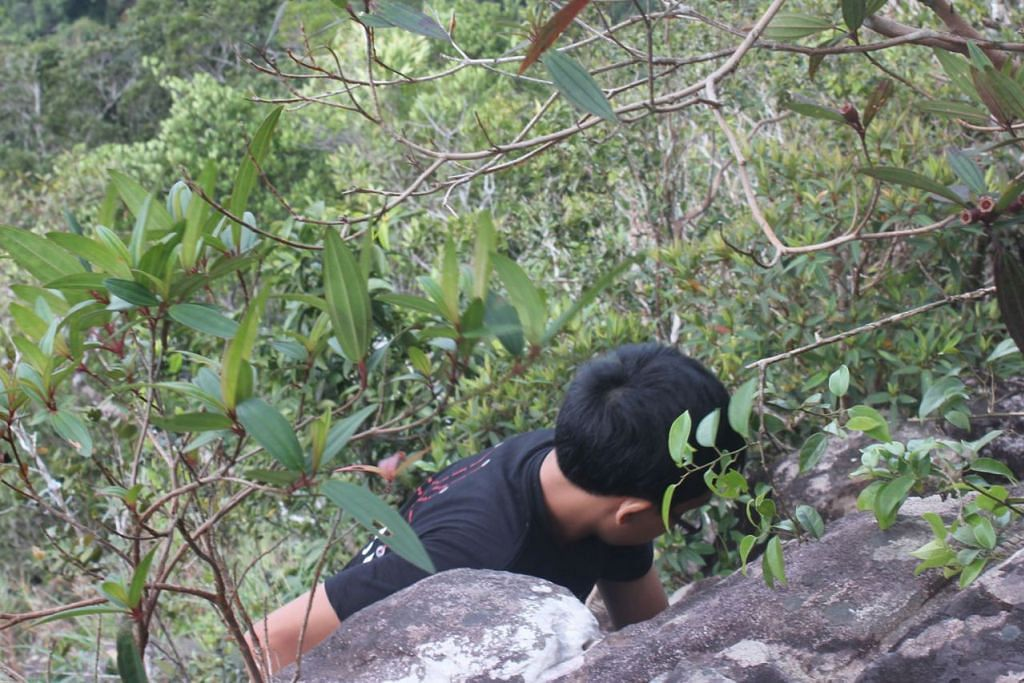 WALAU CURAM, ENGGAN MENYERAH: Meskipun agak mencabar, anak-anak penulis masih mampu mendaki Gunung Mat Cincang, gunung kedua tertinggi di Langkawi.  - Foto ihsan ZAIDI YACOB