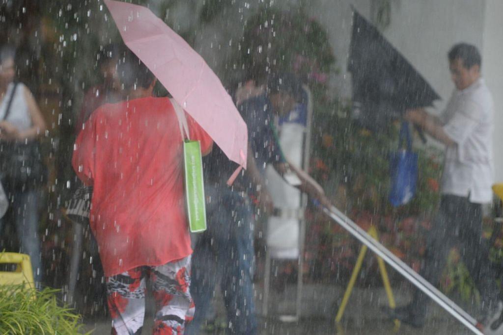 HUJAN TURUN: Khidmat Kaji Cuaca Singapura berkata hujan akan turun dalam tempoh dua minggu ini, justeru ada baiknya mengikuti pepatah Melayu yang berbunyi 'sediakan payung sebelum hujan'. - Foto hiasan