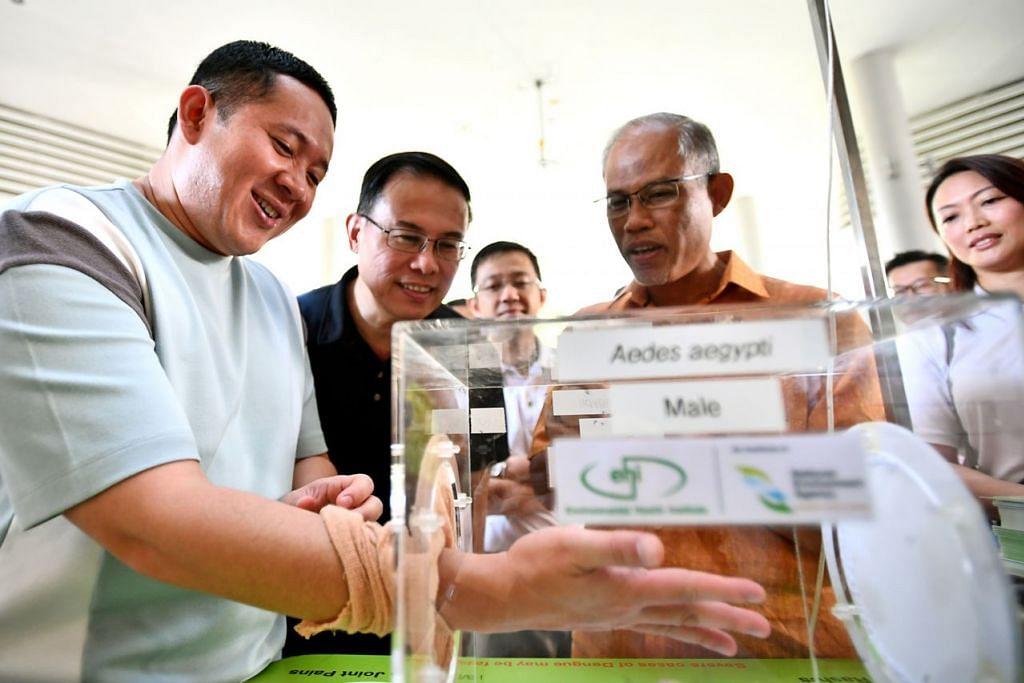 NYAMUK JANTAN TIDAK GIGIT: Penasihat Pertubuhan Akar Umbi Woodlands, Encik Amrin Amin (kiri), meletakkan tangannya di dalam kotak berisi nyamuk jantan Aedes di salah satu pameran di pelancaran Kempen Pencegahan Denggi Nasional 2019 semalam dengan diperhatikan Mayor NorthWest, Dr Teo Ho Pin (tengah) dan Encik Masagos (kanan) - Foto BH oleh LIM YAOHUI