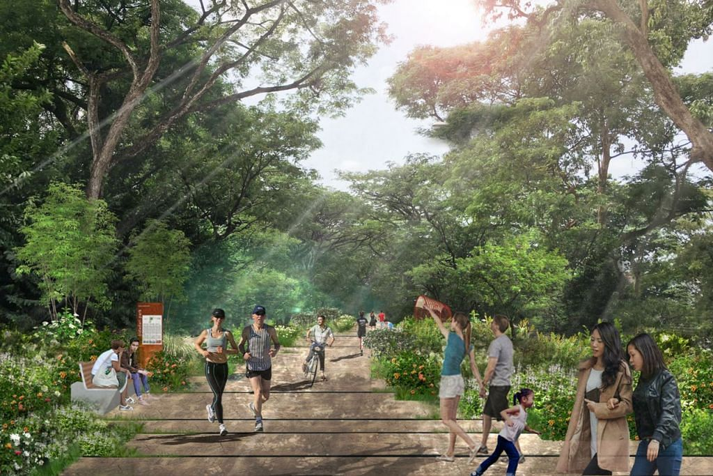 Seri taman estet Bidadari ► TAMAN LUAS MENGHIJAU: Taman Bidadari, yang mempunyai keluasan 10 hektar, akan mengelilingi kawasan estet perumahan Bidadari dan dihiasi kehijauan. Taman juga bakal menempatkan lebih 2,000 pokok baru. Selain menikmati keindahan, flora dan fauna yang ada, terdapat beberapa kemudahan seperti Laluan Jejak Warisan Bidadari (gambar) dan taman permainan kanak-kanak. - Foto HDB