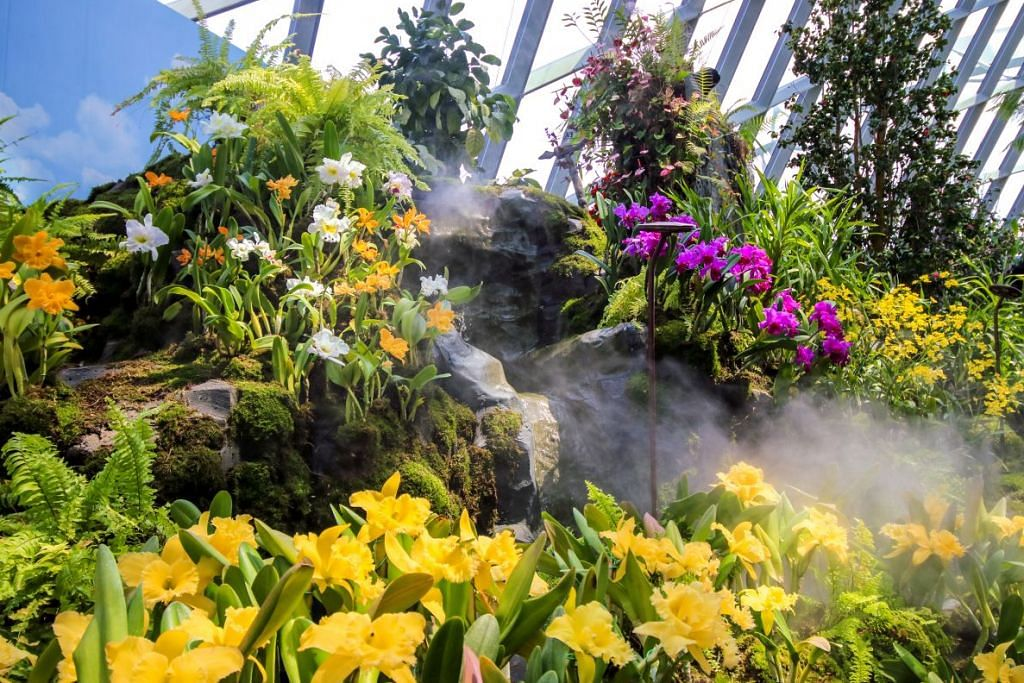 PELBAGAI JENIS ANGGERIK: Terdapat lebih 1,500 anggerik daripada 58 spesies yang dipamerkan dalam 'Scentsational Orchids' di Taman Di Persisiran.