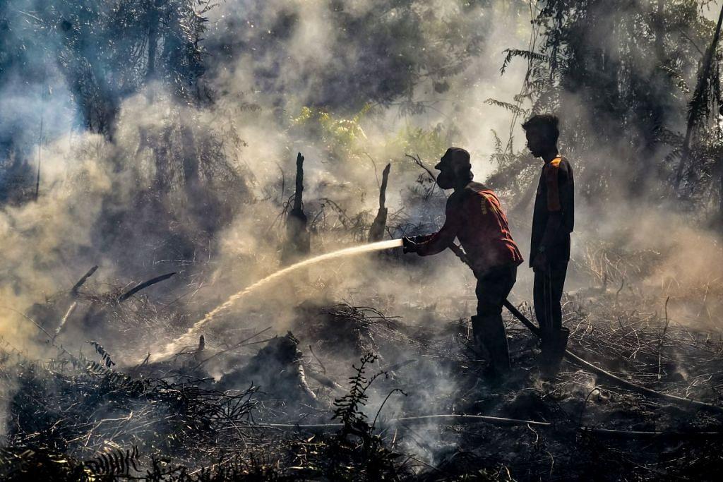 Kebakaran hutan di negara lain: INDONESIA: Anggota bomba memadamkan api di Payung Sekaki di Pekanbaru pada 2 Ogos lalu. – Foto AFP