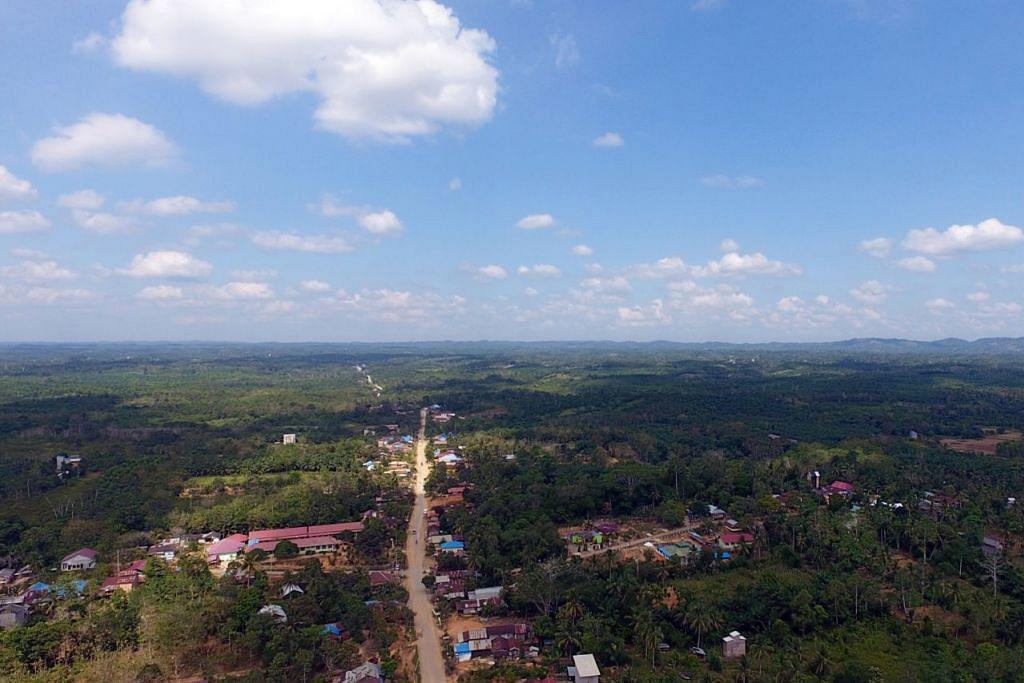 BAKAL JADI IBU KOTA: Inilah gambaran wilayah Sepaku, Penajam Paser Utara, yang diuar-uarkan bakal menjadi ibu kota Indonesia yang baru. - Foto EPA-EFE