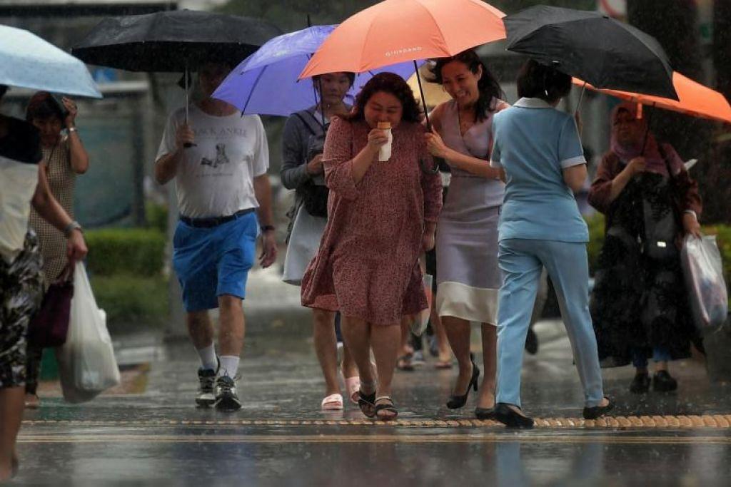Singapura boleh jangkakan hujan berguruh pada waktu petang selama tujuh hingga sembilan hari apabila musim tengkujuh melanda Singapura dalam dua minggu akan datang. - Foto ST oleh KUA CHEE SIONG