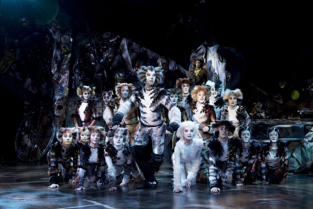 SEKAWAN KUCING: Muzikal Cats membawa anda menyelami dunia kucing yang juga memperjuangkan hak dan mencari kebahagiaan dalam hidup. - Foto CATS TOUR PHOTOGRAPHY BY ALLESANDRO PINNA
