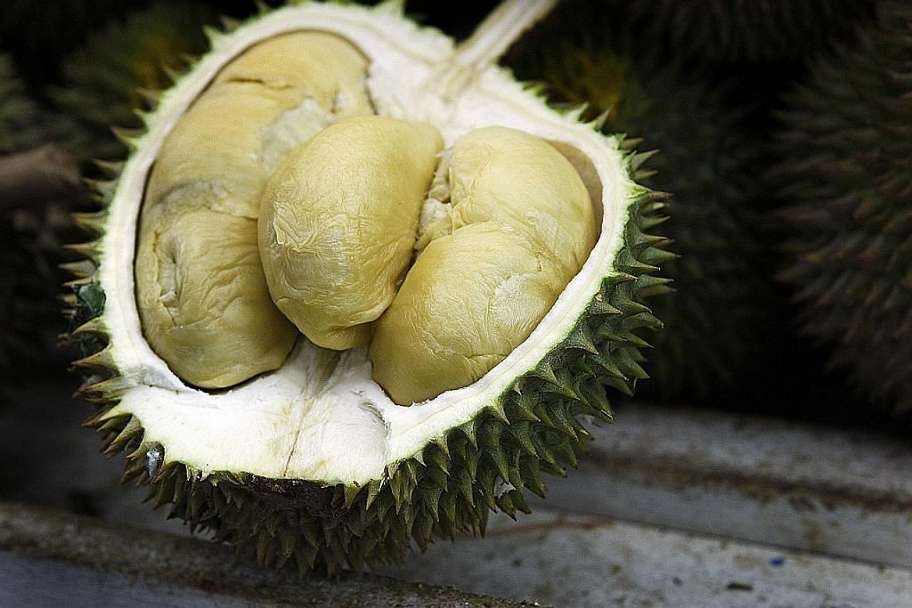Seronok sambut Raya masa musim durian Durian... lain nama, lain rasa