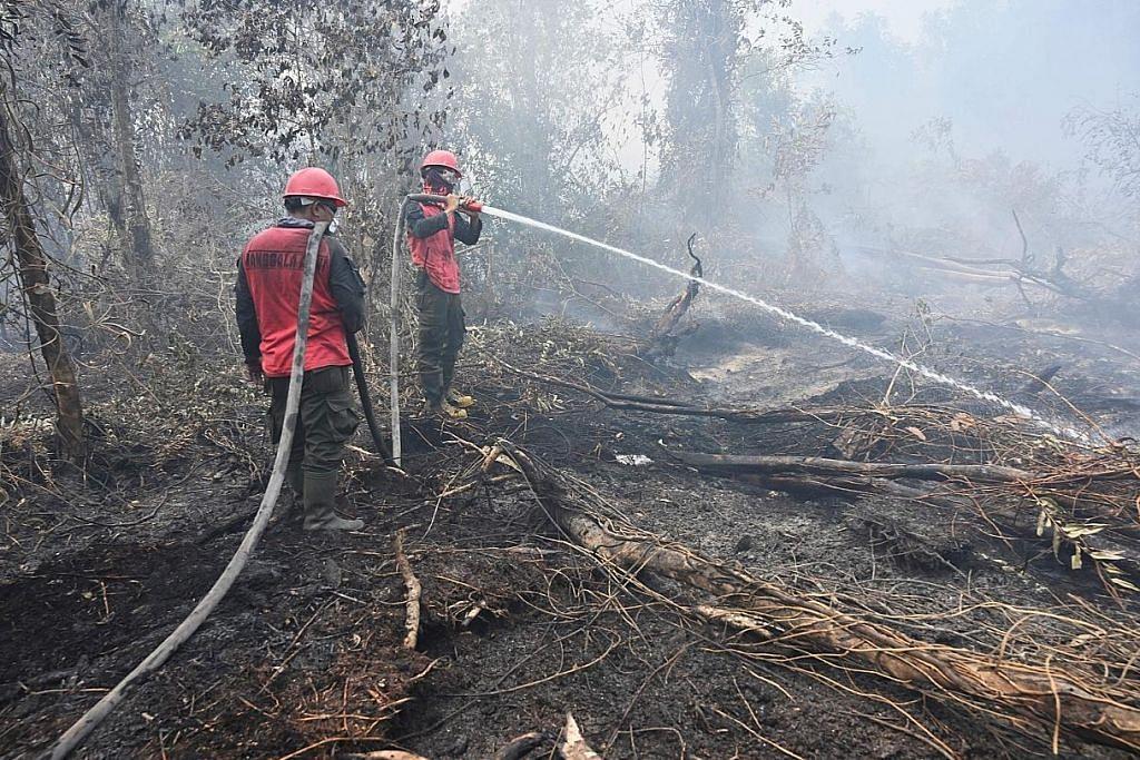 Hampir 200 diberkas di Indonesia sebabkan kebakaran, jerebu