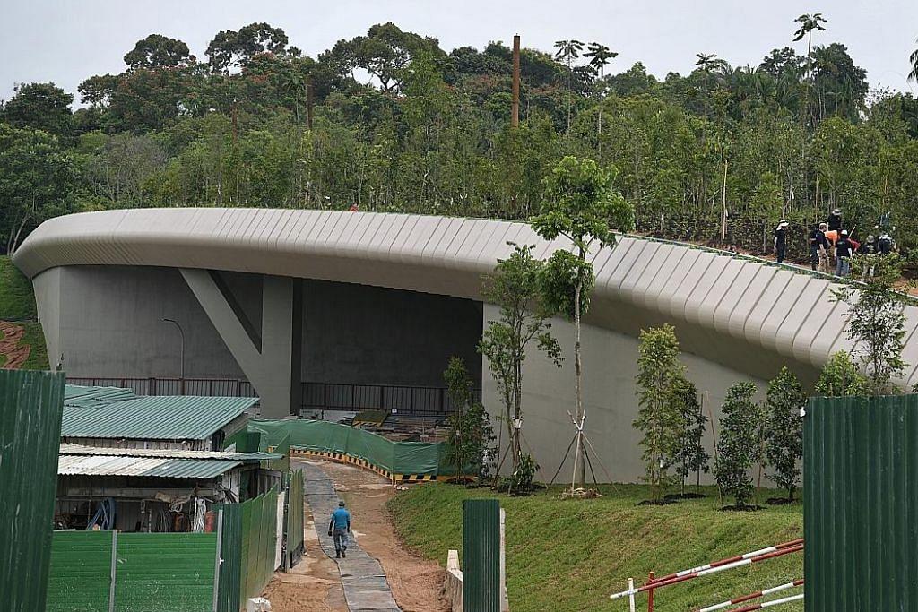 Jambatan Hidupan Liar Mandai dibuka bulan depan