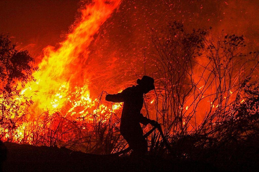 Kerosakan akibat kebakaran hutan Indonesia berjumlah $7.1b