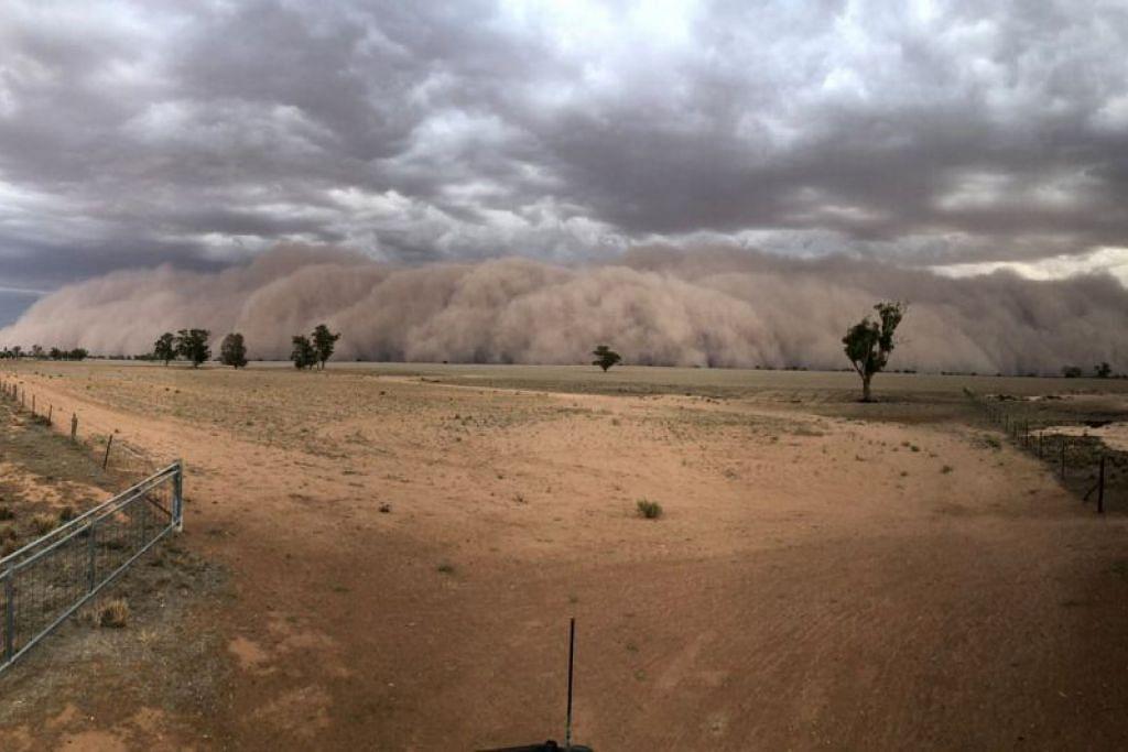 DILANDA RIBUT DEBU: Ribut debu menuju ke arah ladang yang terletak di kawasan Utara-Barat Dubbo, New South Wales, Australia pada 19 Januari. Foto: JASON HERBIG/REUTERS