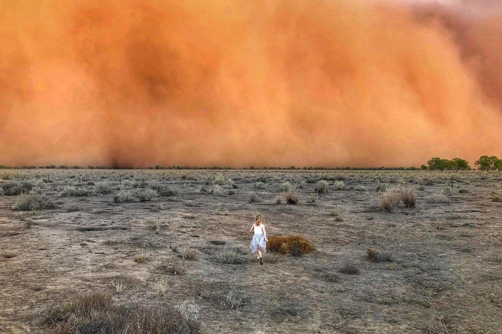 BEBERAPA KAWASAN AUSTRALIA DILANDA RIBUT DEBU: Seorang kekanak perempuan sedang menuju ke arah ribut debu di Mullengudgery, New South Wales pada 17 Januari. -Foto: MARCIA MACMILLAN/AFP