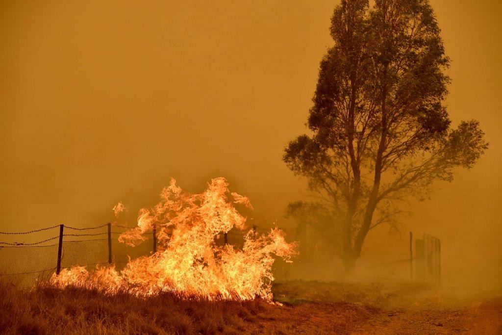 DIJILAT API: Kebakaran belukar berlaku berdekatan Bumbalong, Canberra Selatan pada 1 Febuari 2020. Antara faktor yang menyebabkan kebakaran berlaku di Australia adalah cuaca amat panas. – Foto AFP