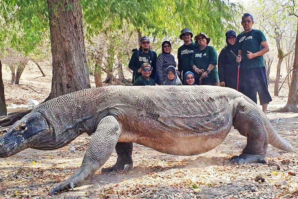 BERDEPAN 'NAGA RAKSASA': Di Pulau Rinca, kami berpeluang melihat dan berjalan dengan binatang serupa biawak raksasa yang dipanggil komodo.
