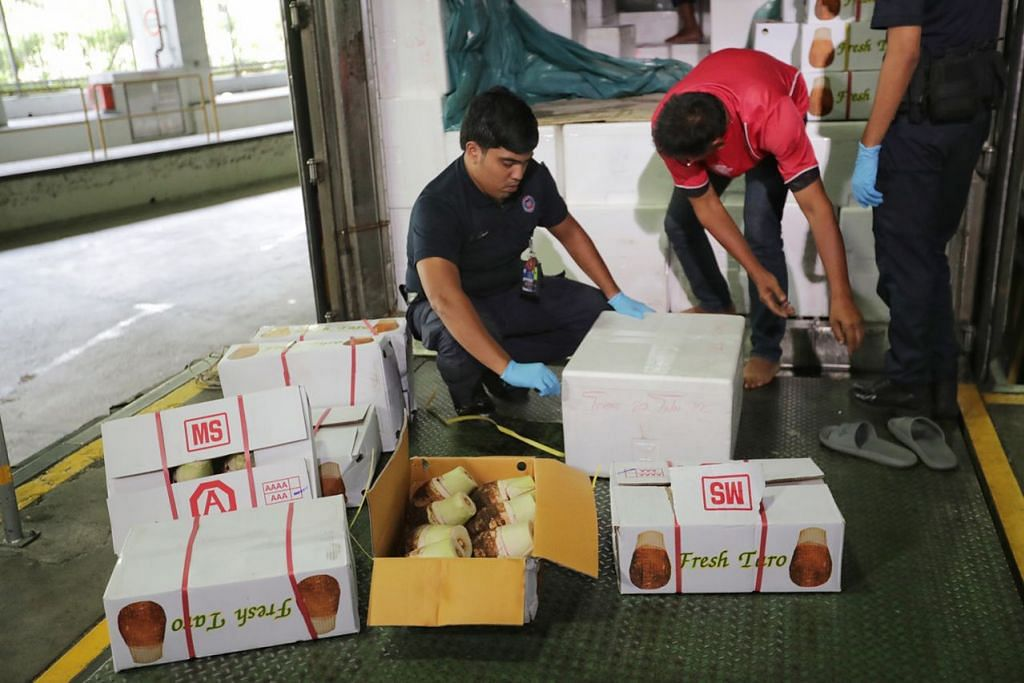 BUAT PEMERIKSAAN: Pegawai ICA memeriksa barangan di dalam trak penghantaran yang memasuki Pusat Pemeriksaan Woodlands dari Malaysia semalam. – Foto BH oleh GIN TAY