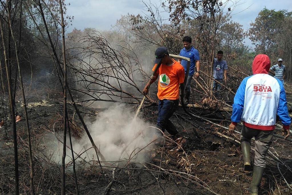 Riau, Sumatera Selatan isytihar darurat akibat kebakaran hutan