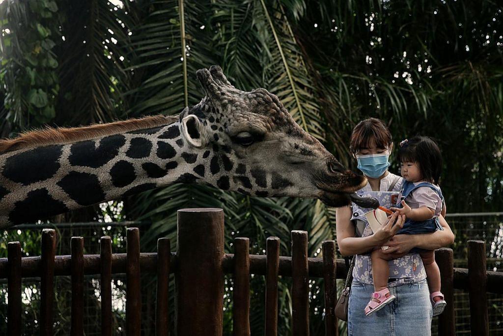 2,000 lawat Taman Haiwan S'pura