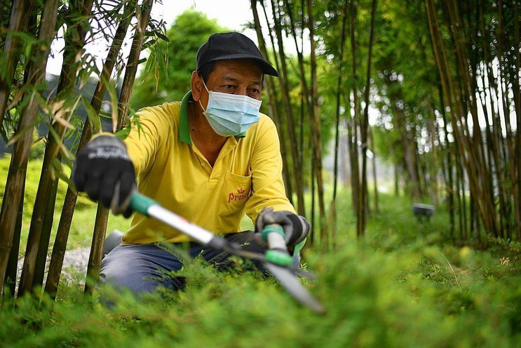 Pekerja landskap bawa pulang gaji lebih tinggi berkat Model Gaji Progresif
