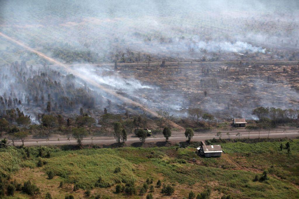 Foto hiasan kebakaran hutan di Banjarmasin, Kalimantan Selatan. - Foto REUTERS/WILLY KURNIAWAN