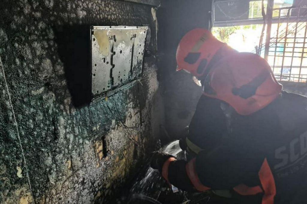 Satu siasatan awal menunjukkan kebakaran itu disebabkan oleh sumber elektrik di ruang tamu flat itu, kata SCDF.