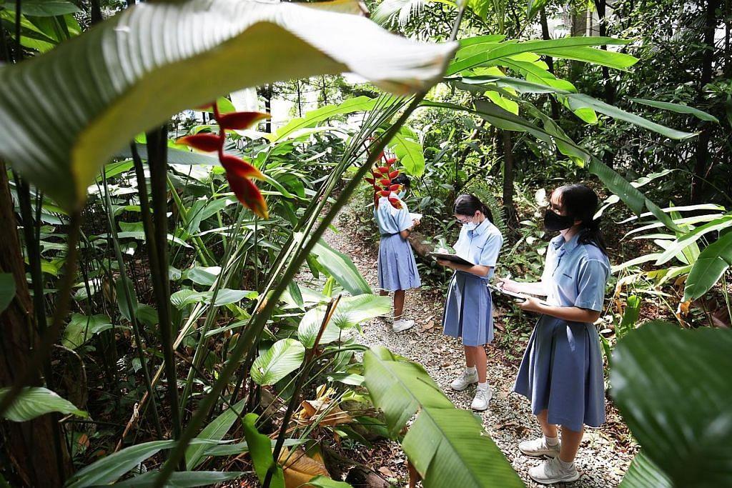 Program Teraju Eko dilancar di sekolah