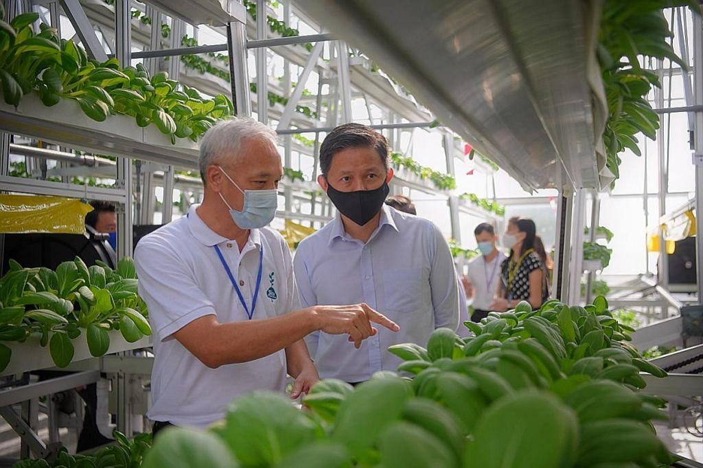 Syarikat akuakultur setempat mahu eksport sistem pertanian mikro ke serata dunia
