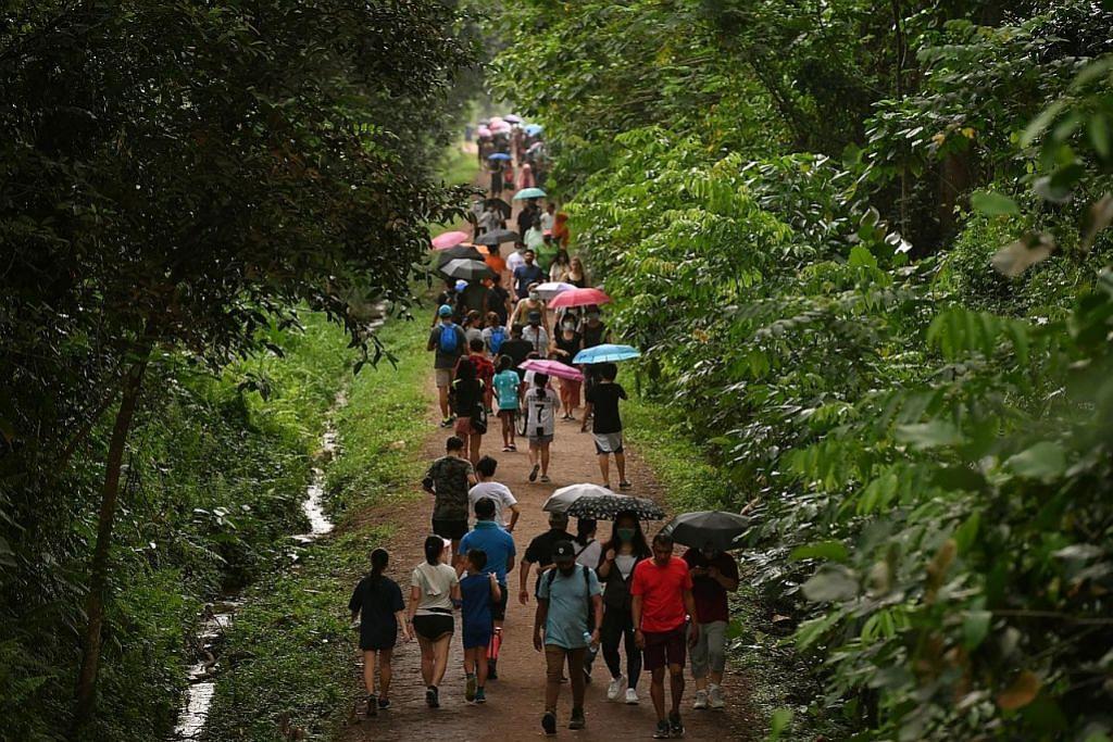 Alam semula jadi SG diancam hobi 'trekking'